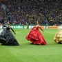 Performance-Design-DFB-Pokalfinale-2014-CM5P8328-960x600